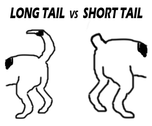 Long-Tail Keywords vs Short-Tail Keywords: Pros and Cons