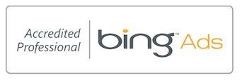 Internet-Marketing-Bing-Professional
