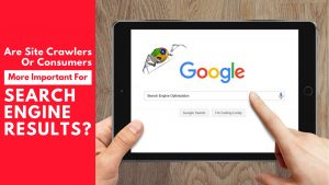 Are Site Crawlers or Consumers more important for search engine results?